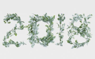 Transform Your Yard With These New Year's Landscaping Resolutions